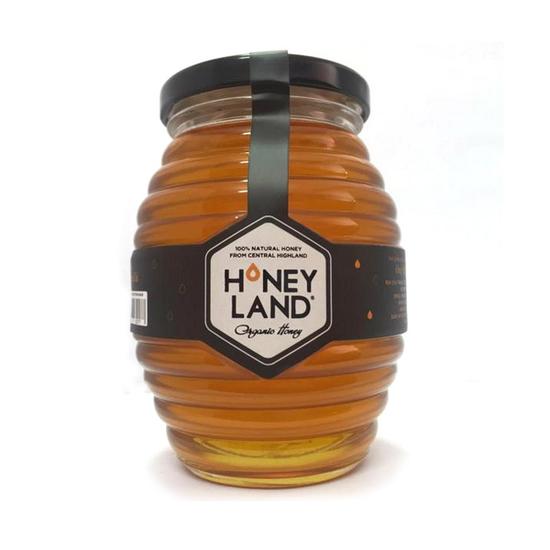 Tiền Giang Honey_3 hũ mật ong hoa xuyến chi 500gr +2 hũ mật ong rừng 250g+2 hũ mật ong nhãn 230g