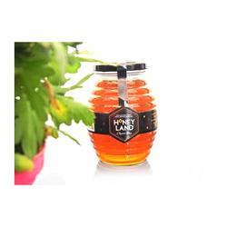 [GN]3 hũ mật ong hoa xuyến chi 500gr + 3 hũ mật ong rừng 250g + 1 gói yến mạch 500gr