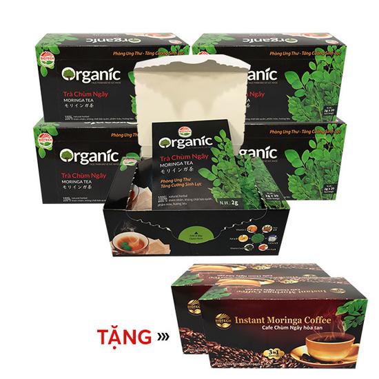 Combo 05 Trà Chùm ngây túi lọc nguyên chất cao cấp - tặng 2 hộp cafe Chùm ngây
