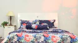 AIR WEAR BED- BST Phú Qúy 1m6́ no blanket + 1 set drap ngẫu nhiên