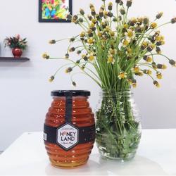 Tiền Giang Honey_2 mật ong hoa Xuyến Chi 500g+1 mật ong hoa rừng 250g +1 mật ong hoa nhãn 230g