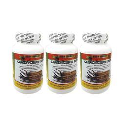 Bộ 3 hộp Đông trùng hạ thảo Cordyceps 950 loại 30 viên