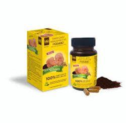 Tinh chất nấm linh chi HQgano ( 3 lọ + 1 lọ)